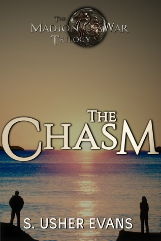 Blog Tour: The Chasm by S. Usher Evans